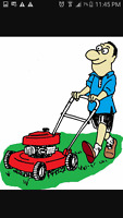 Spring clean up.Lawn mowing. lawn mower repair & Garbage removal