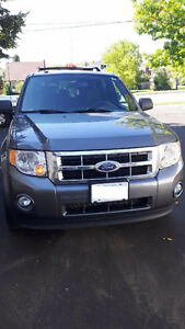2011 Ford Escape XLT - Very Clean - Safety + E-Test