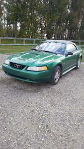 1999 Ford Mustang Convertible - Needs Engine