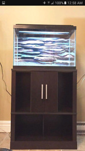 20 gallon tank and cabinet/stand....GREAT DEAL!!!