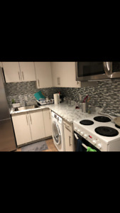 BRAND NEW ONE BEDROOM BASEMENT SUITE AVAILABLE JAN/FEB 1