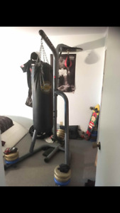 Punching-bag  fully equipped for sale