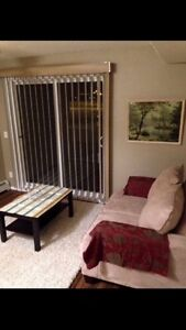Furnished one bedroom aprt for rent in applewood