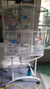 Large Bird Cage on wheels with 4 budgies