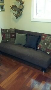 Fold down couch/guest bed
