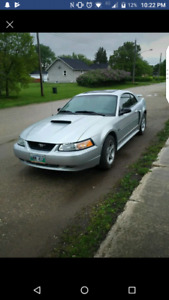 2003 mustang GT safetied