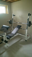 Adjustable Bench Press & Olympic Bar with Weights