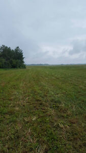 15 acre lot near Redwater