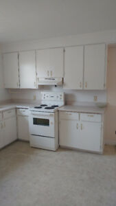2 bedroom apartment, Fredericton North, Murray Avenue