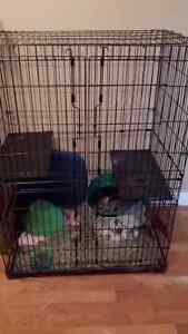 Large small animal cage, good shape !
