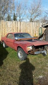For sale 1968 Mustang manual Coupe