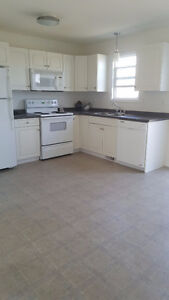 39-118 Pawlychenko Lane, fully upgraded ready to move in!