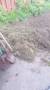 Clean topsoil for pickup