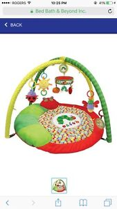 Hungry Caterpillar Baby Gym
