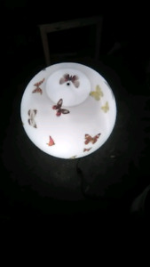 One of a kind Butterfly Ball Light