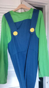 Adult Luigi male Costume
