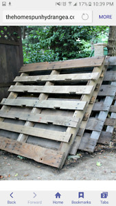 Looking for free or cheap good pallets.