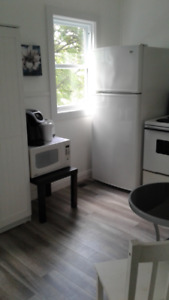 Max 4 month rental close to UNB