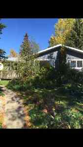 Main floor of house for rent in Leduc