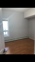 Residential and Commercial Painting.