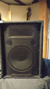 100 Watt Passive Stage Monitor Pair