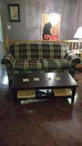 Sofa and Chair ($50 for both together)