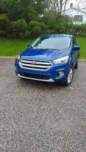 2017 FORD ESCAPE SUV problems WARNING WARNING