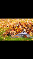 Leaf Lawn Raking Service (Manior Des Trembles: Hull)