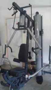Body Solid Bi-Angular Home gym