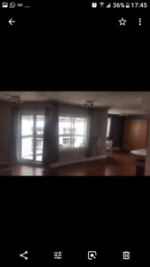 Amazing condo -loft for rent in Downtown