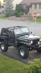 JEEP TJ NOIR RUBICON EXPRESS BUSHWACKER