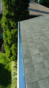 Eavestrough Cleaning! London Ontario image 8