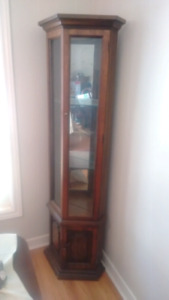 Classic lighted wooden curio cabinet