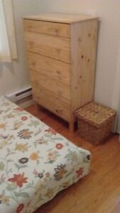 fully furnished 1 bdrm apt downtown available Feb 1