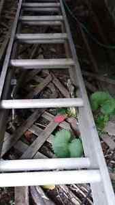Ladder 50Ft