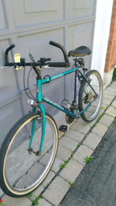 Raleigh bike for parts