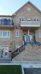 BRAND NEW CONDO TOWNHOUSE FOR RENT IN HOTSPOT