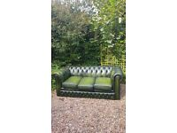 Green leather three seater Chesterfield sofa
