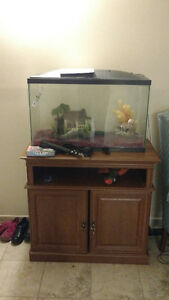 40 gallon fish tank with everything make a offer