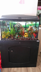 29g top fin tank/stand with fluval filter and decor