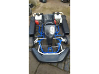 Go Kart Twin Honda Engined PX Swap Anything considered Uk Delivery