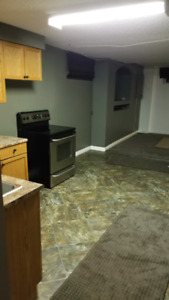 FULLY RENOVATED 2 BEDROOM SUITE NW EDM CASTLEDOWNS