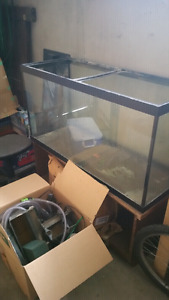 90g African Cichlid aquarium - Just add fish!