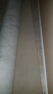 10 x 12 Carpet section for sale