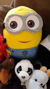 This minion is looking for a new home for him and his buddies.