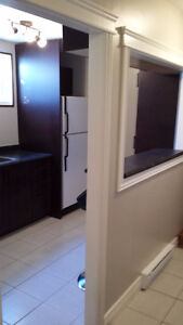 1 Bedroom apartment near Village Mall