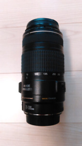 Canon EF 70-300mm f/4-5.6 Zoom Lens