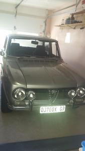 Classic Alfa romeo Guilia