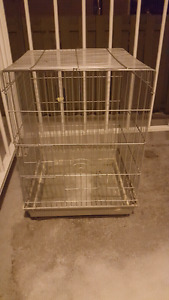 Small Parrot Cage for Sale.