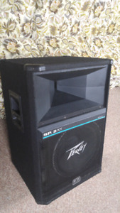 Peavey SP2XT speakers